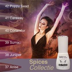 White Angel Spices Collectie 10 Ml   7424934755714